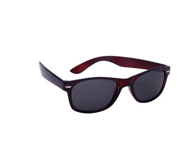 Wayfarer zonnebril, Collorado, Bruin